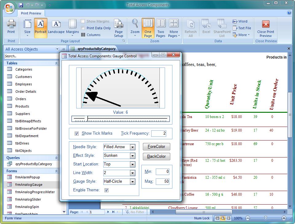 microsoft access database application development