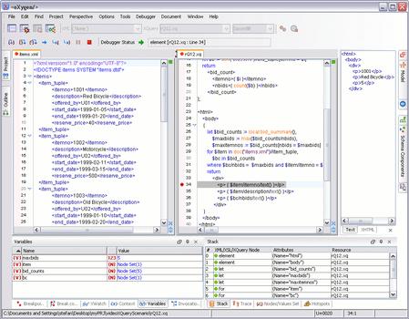 Oxygen XML Editor Professional - Delgatec Softwares