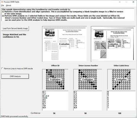 FormFix Professional .NET 的螢幕截圖