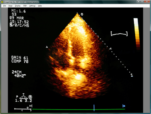 Screenshot of ImageGear Medical