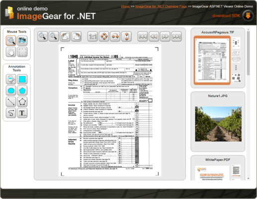 Screenshot of ImageGear for .NET