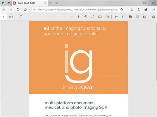Schermata di ImageGear PDF