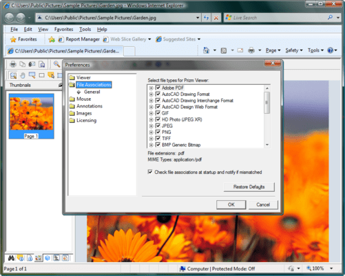 Screenshot of Prizm ActiveX Viewer