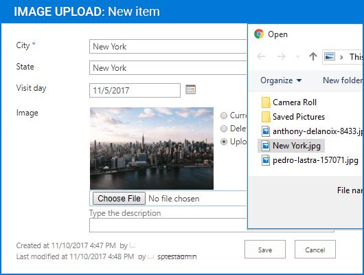 Screenshot of Image Upload Column