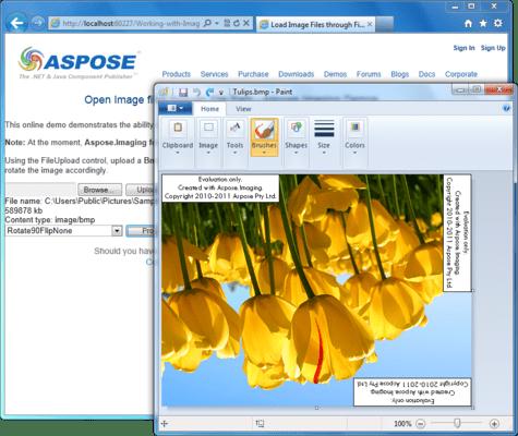 Screenshot of Aspose.Imaging for .NET