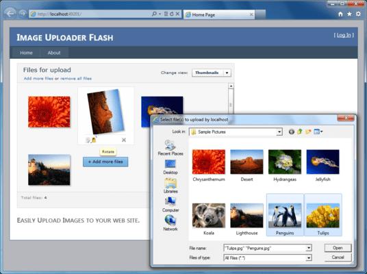 Screenshot of Image Uploader Flash