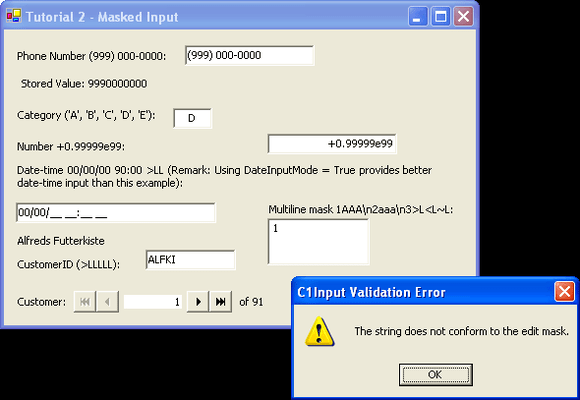 Screenshot of ComponentOne Input for WinForms