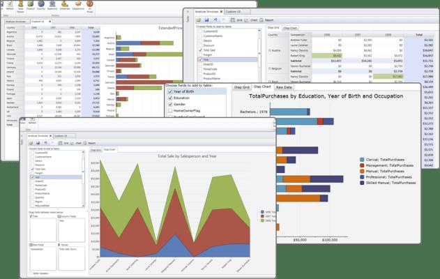 ComponentOne OLAP for LightSwitch(英語版) のスクリーンショット