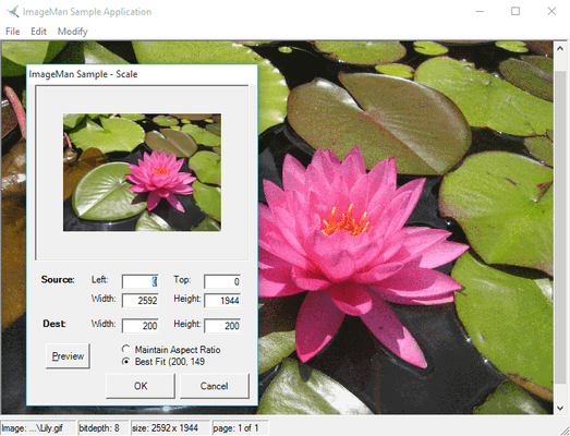 Screenshot of ImageMan.Net