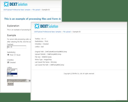 Screenshot of DEXTUpload Pro
