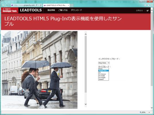 LEADTOOLS HTML5 Plug-In(日本語版) のスクリーンショット