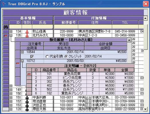 True DBGrid Pro(日本語版) のスクリーンショット