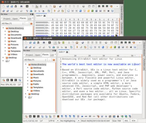 Capture d'écran de UltraEdit for Linux