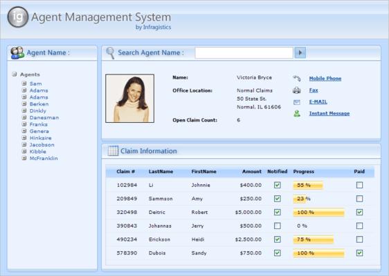 Schermata di Infragistics NetAdvantage for Web Client