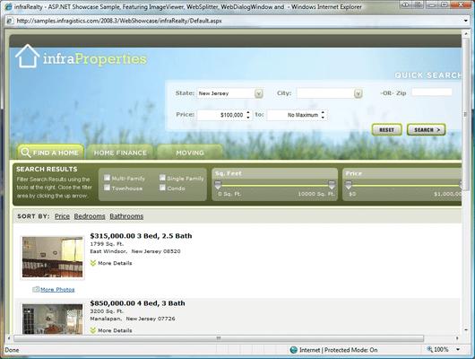 Screenshot of Infragistics WebEditors