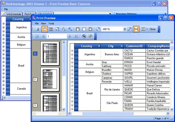 Screenshot of Infragistics WinPrinting