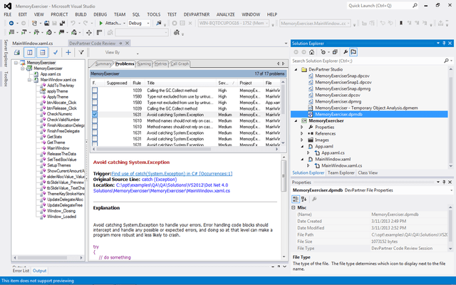 Screenshot of DevPartner Studio Professional Edition, Concurrent Users