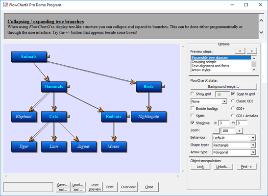 MindFusion.Diagramming for ActiveX Professional(英語版) のスクリーンショット