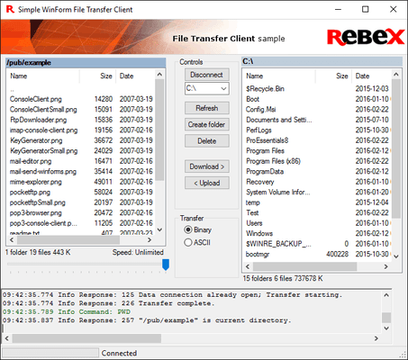Screenshot of Rebex File Transfer Pack