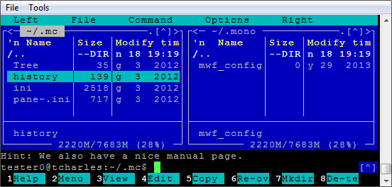 Screenshot of Rebex Terminal Emulation