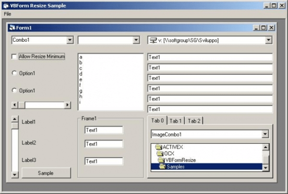 Screenshot of Softgroup VB Forms Resize