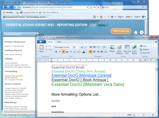 Screenshot of Syncfusion Essential DocIO for ASP.NET MVC