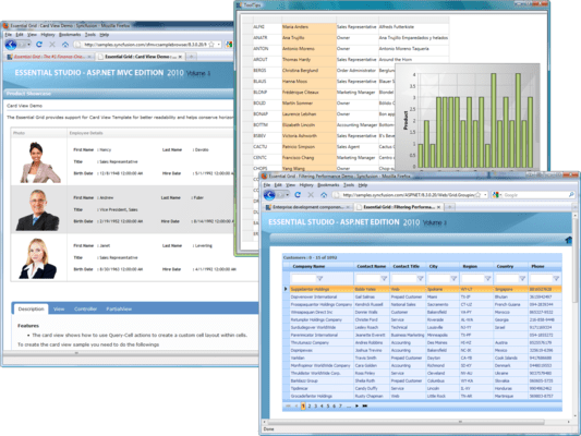 Screenshot of Syncfusion Essential Grid