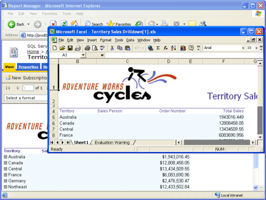 Screenshot of Aspose.Total for Reporting Services (SSRS)