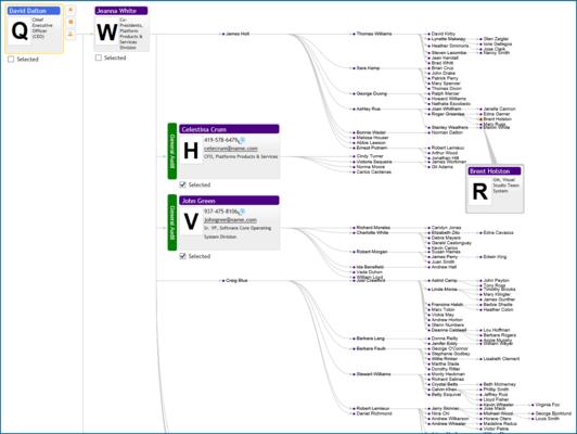 Organizational Chart Cross Functional Team