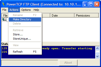 FTP ListView Client