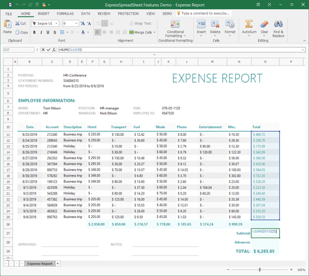 Spreadsheet Expense Report