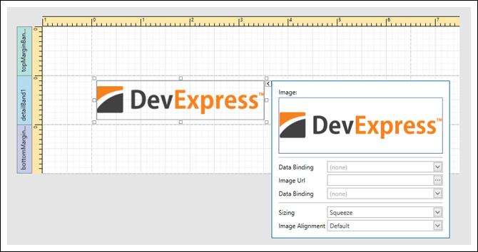 DevExpress Reporting Screenshots