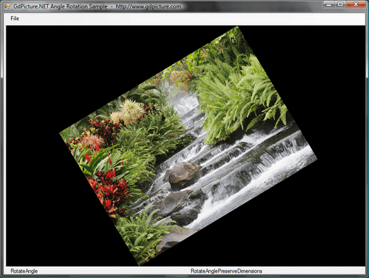 Screenshot of GdPicture.NET Image SDK