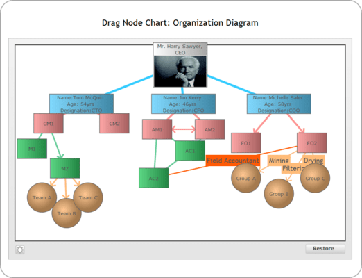 <strong>Drag-node Chart</strong><br /><em>The drag-node chart is a specialized type of chart where each data set is shown on the chart as a drag-able node. Perfect for network diagrams, hierarchy structures etc. this chart provides a highly intuitive interface for your end users to visually adjust related entities, link them and even add new ones. You can take visual inputs from your users using this chart and then submit the final positions of the nodes to your scripts for further processing.</em><br /><br />