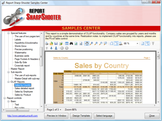 Screenshot of SharpShooter Reports.Professional