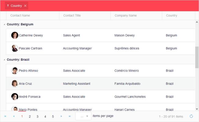 Kendo UI + Telerik UI for ASP NET (MVC & Core), PHP, JSP Screenshots