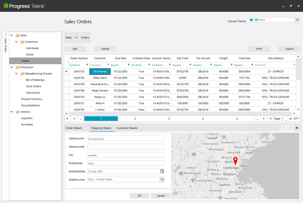 Telerik UI for WinForms - ERP Orders