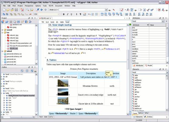 oXygen XML Editor Enterprise (英語版+日本語版) のスクリーンショット