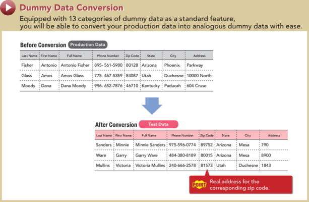 Dummy Data Conversion