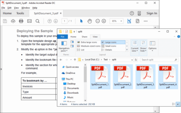 ExpertPDF Toolkit v10