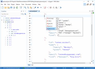 Oxygen XML Developer Enterprise V21.0