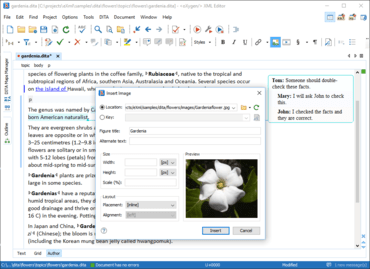 Oxygen XML Editor Enterprise V21.0