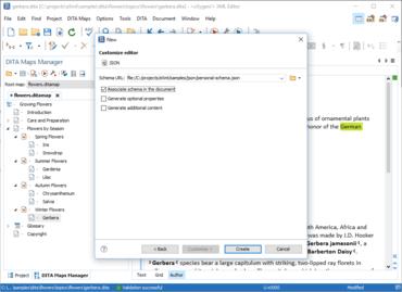 Oxygen XML Developer Professional V21.1