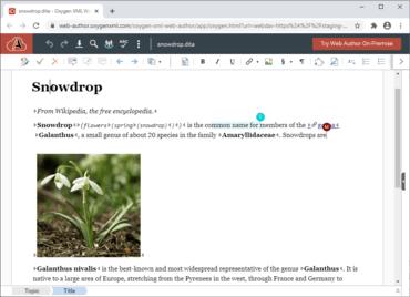 Oxygen XML Web Author V23.0