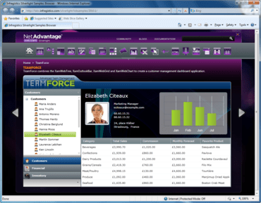 NetAdvantage .NET adds Office 2010 style