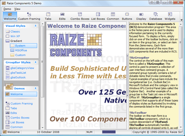 Raize Software adds RAD Studio XE support