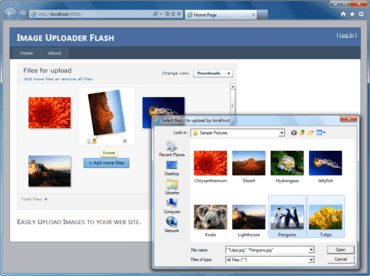 Image Uploader Flash 7.2.9 released