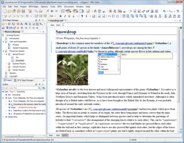 oXygen XML improves Visual XML Editing