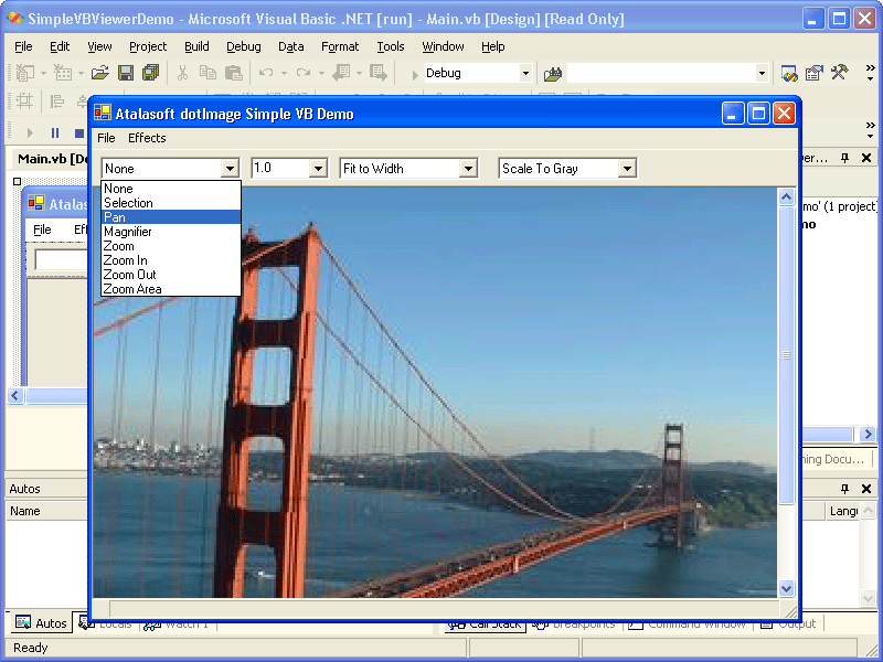 Screenshot of Atalasoft DotImage Photo Pro