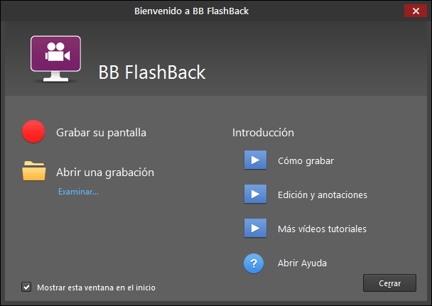 Screenshot of FlashBack Pro Spanish Edition